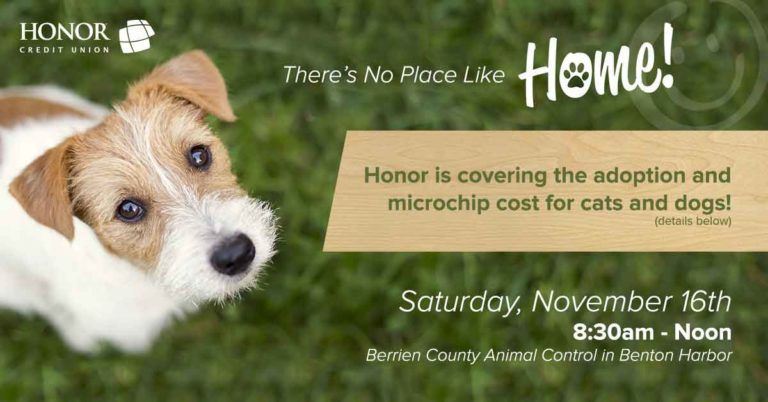honor credit union is partnering with berrien county animal control for adoption day on november 16, 2019; photo of dog looking up at the camera