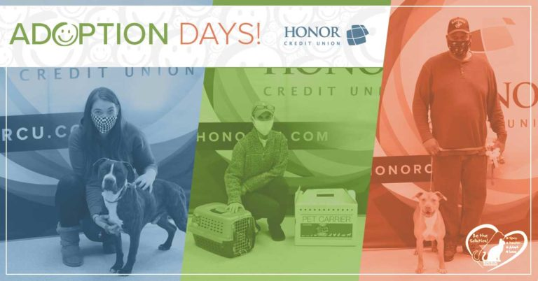 image of three pets being adopted at honor credit union adoption days at berrien county adoption days in 2020